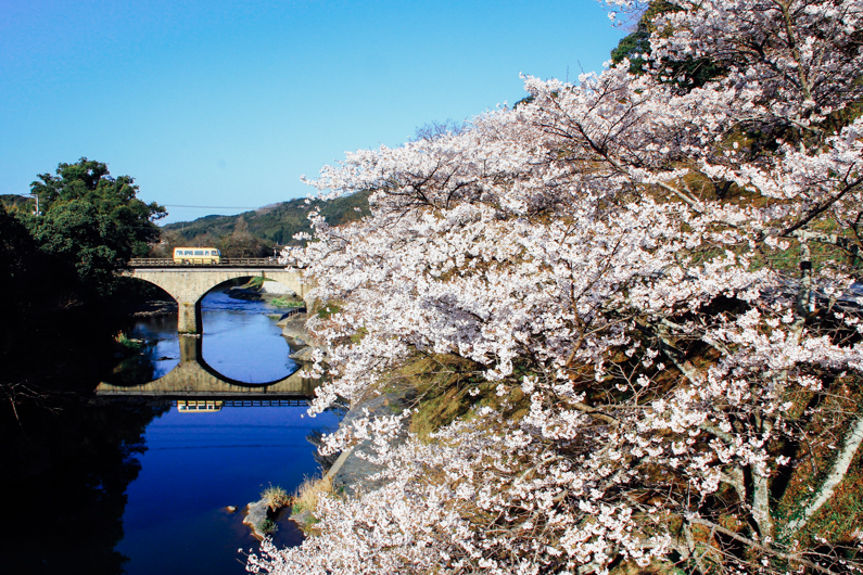北川内公園の桜と石橋散策